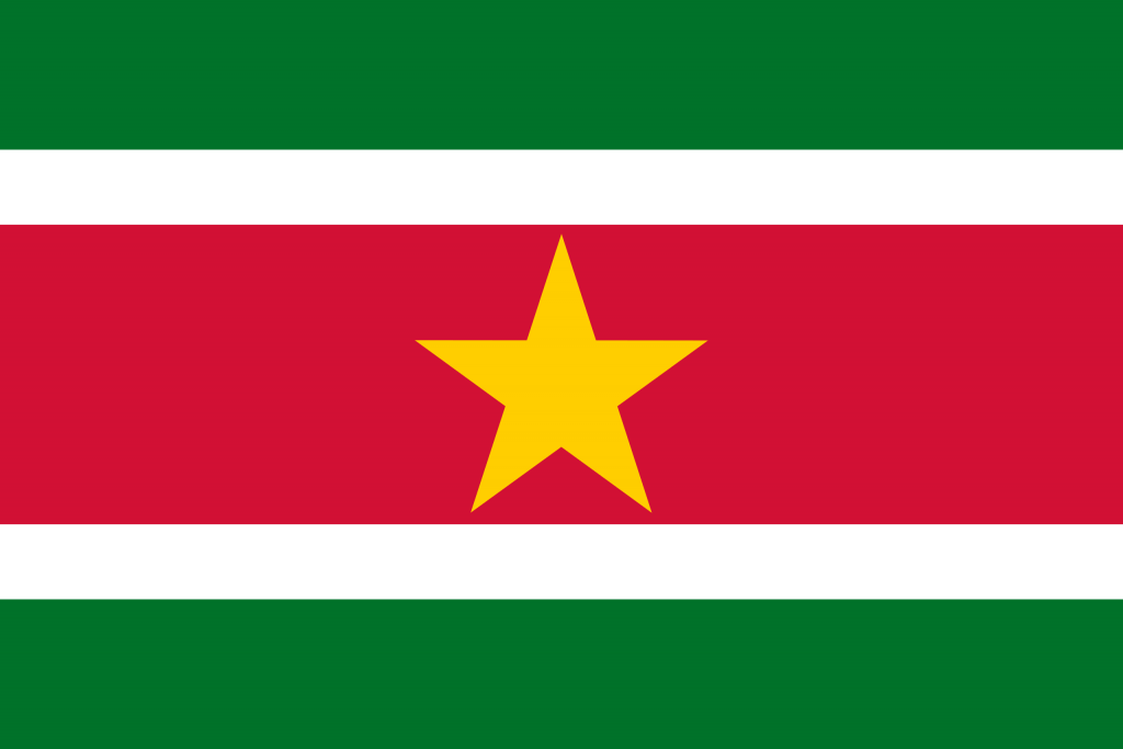 Facebook and Instagram user demographics in Suriname – August 2017