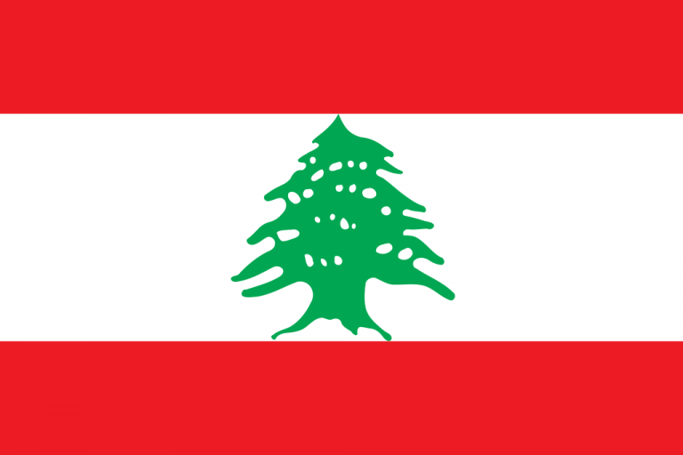 Facebook and Instagram user demographics in Lebanon – August 2017
