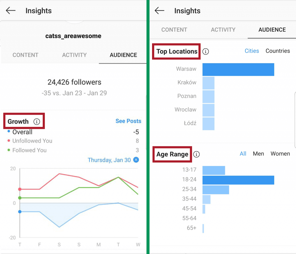 Instagram Insights - audience