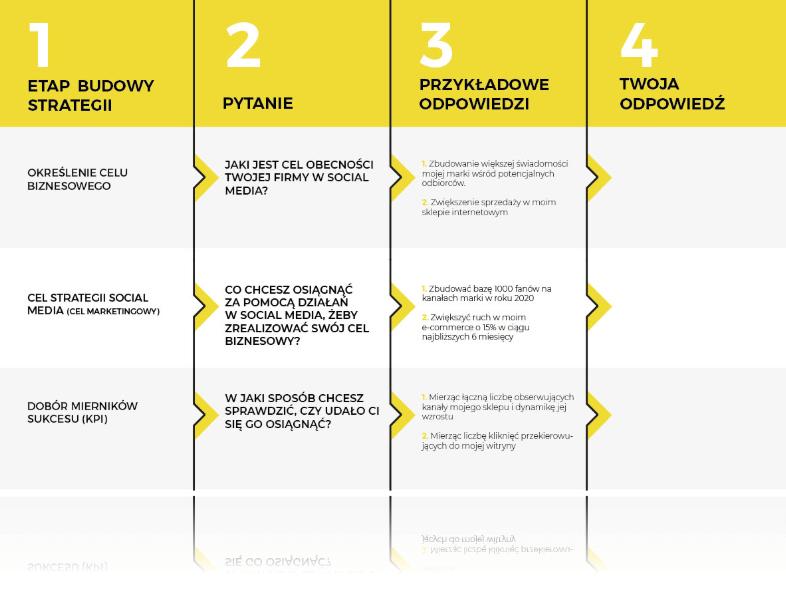 Mapa strategii social media NapoleonCat