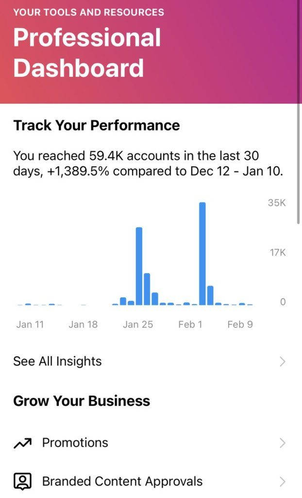 Instagram new features and updates - professional dashboard