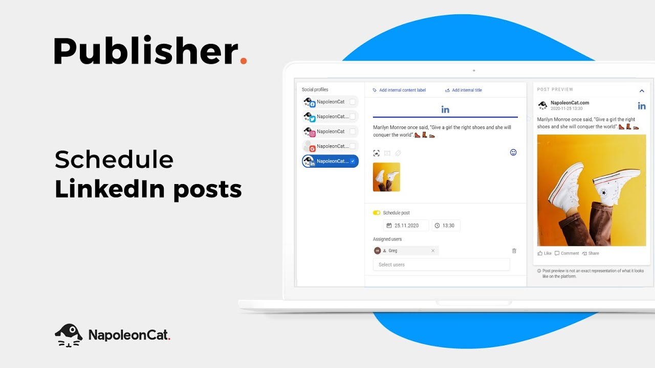 Publisher - Schedule LinkedIn posts with NapoleonCat