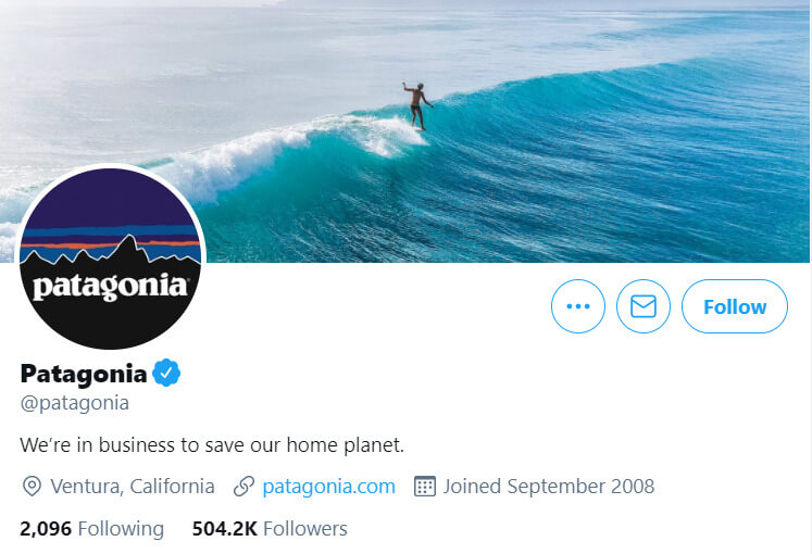 Patagonia example of company culture on social media