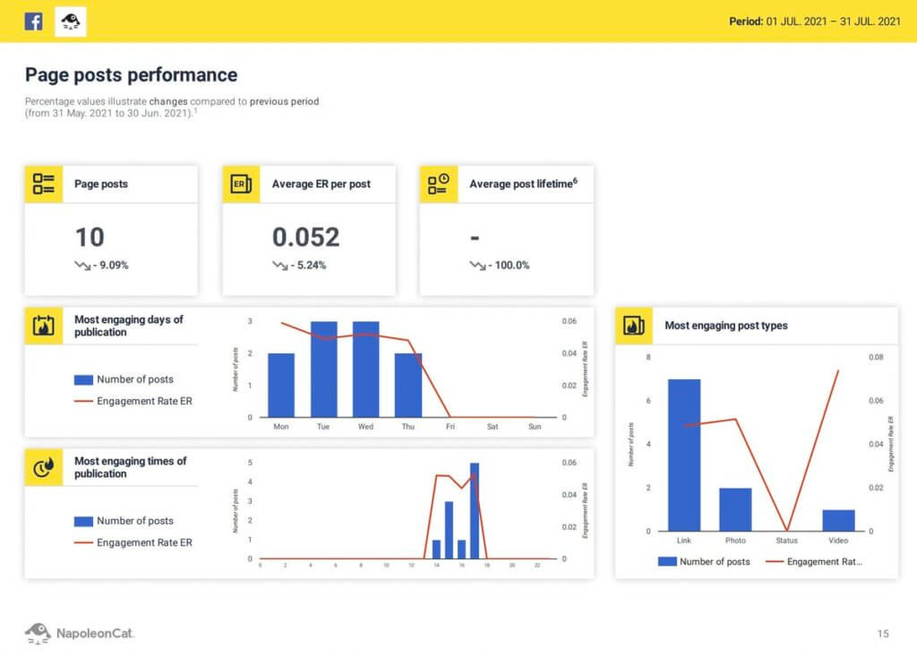 Facebook Analytics Report - sample page from a report
